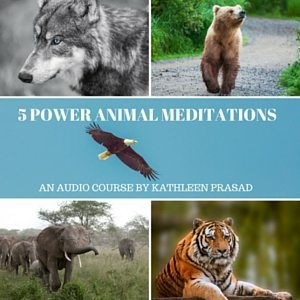 5 Power Animal Meditations Audio 300px