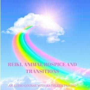 Reiki Animal Hospice and Transitions Audio 300px
