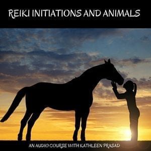 Reiki Initiations and Animals Audio