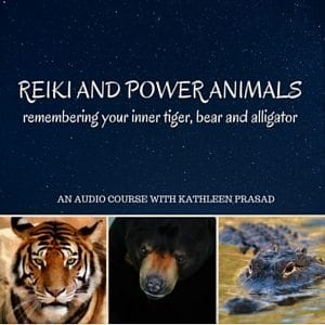 Reiki and Power Animals 300px