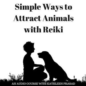 Simple Ways to Attract Animals with Reiki 300px