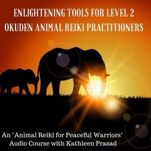 Enlightening Tools for Level 2 Okuden Animal Reiki Practitioners
