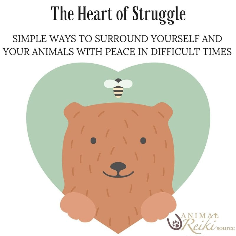 The Heart of Struggle