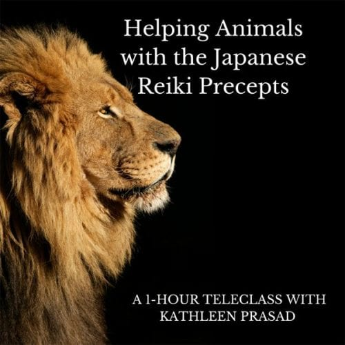 Helping Animals with Reiki Audio Course