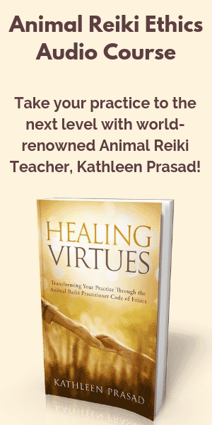 Kathleen Prasad's Animal Reiki Source