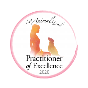Animal Reiki Practitioner of Excellence