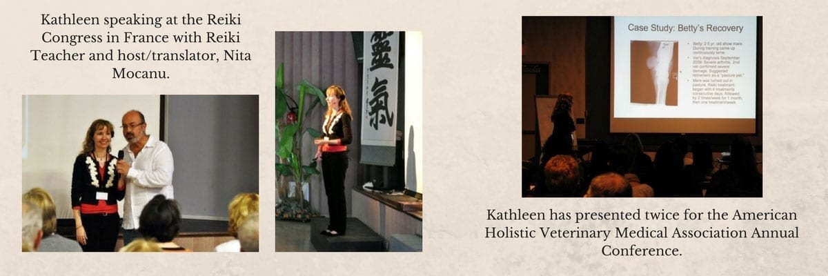 kathleen prasad speaking at the reiki congress and american holistic veterinary medicine conference