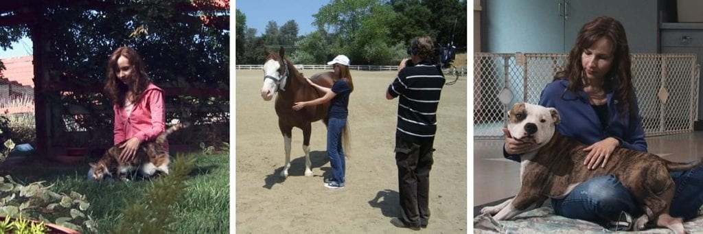 Kathleen sharing Reiki healing with dogs and horses
