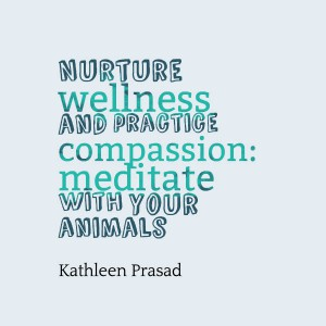 Nurture wellness and practice compassion: