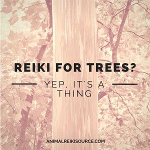 Reiki for trees